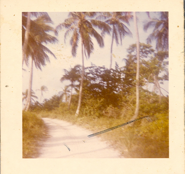 utila-point-road-back-of-the-point-1960s